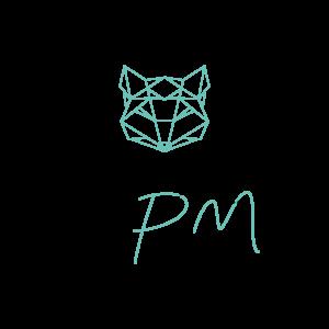 Rvb-StudioPm-Logo- creation de sites web - reseaux sociaux